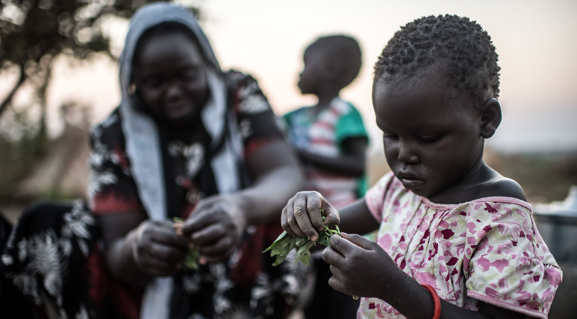 A girl in BidiBidi refugee camp prepares cow-pea leaves grown by a Caritas beneficiary.